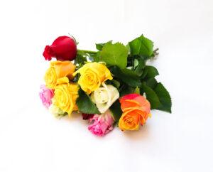 Mixed Roses