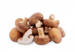 Shiitake Mushroom Isolated 37874 1447